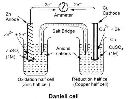 diagram of daniell cell diagram of cells diagram free engine image for user