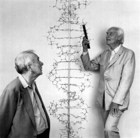biografia watson y crick el idioma de la vida 60 a 241 os del descubrimiento de la
