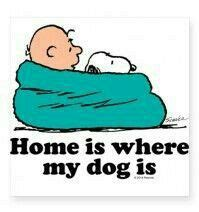 home is where my is peanuts dogs