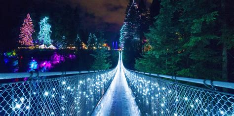 Canyon Lights At Capilano Suspension Bridge Are Back Light Vancouver