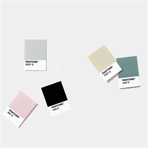 pantone color chips pantone plus series solid chips coated uncoated