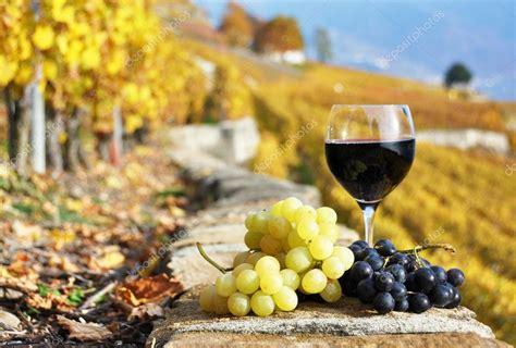 imagenes de uvas y copas copa de vino tinto y uvas en el vi 241 edo de terraza de
