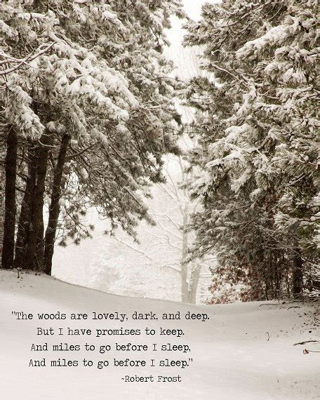 the wood for the trees one s view of nature books winter snow landscape robert quote trees woodlands sepia