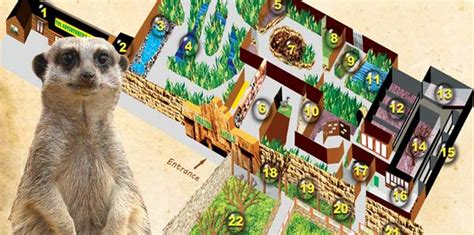 amazon zoo zoo map visiting the zoo amazon world zoo park isle