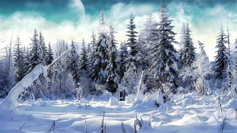 imagenes de invierno navideñas vivaldi el invierno las cuatro estaciones salzburger