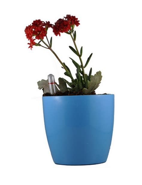 small self watering pots self watering planter small turquoise greenmylife