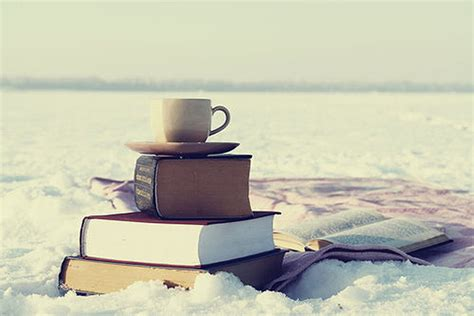 winter books a snowy reading quest great mg ya books to read in the