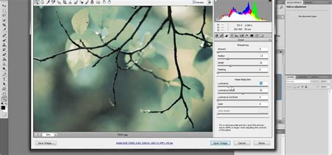 noise reduction tutorial photoshop cs5 how to use the noise reduction filter in adobe photoshop
