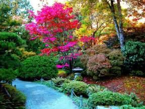 fondos de pantalla de jardines wallpapers de jardines