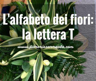 fiori con la lettera a l alfabeto dei fiori la lettera t idee fiorite