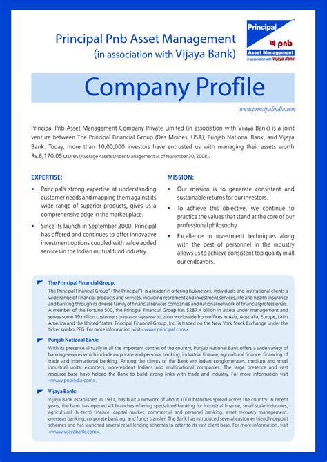 company profile template for small business doc 690728 business profile template word templates