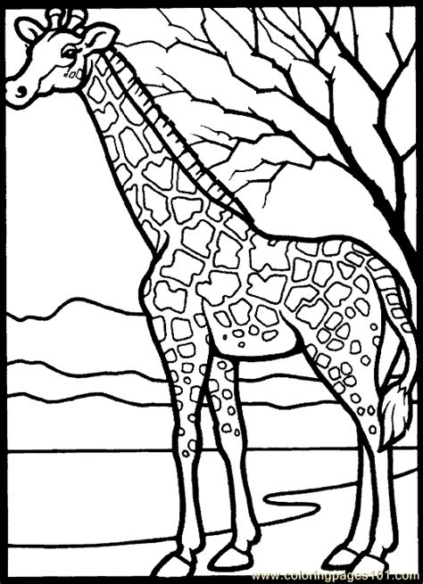 coloring page giraffe free coloring pages giraffe coloring page 02 animals gt giraffe
