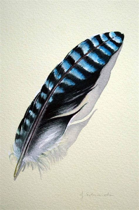 blue jay feather tattoo future idea blue feather for you
