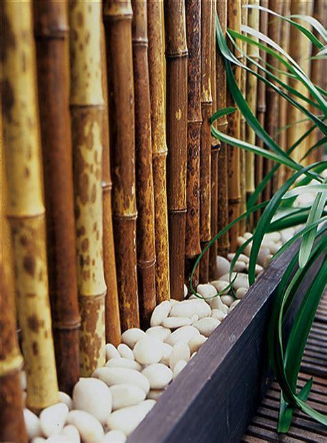 schöner sichtschutz design einrichten balkon
