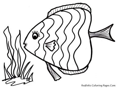 Free Coloring Pages Tropical Fish | tropical fish coloring page az coloring pages