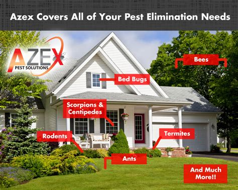 Bed Bug Heat Treatments Azex Pest Solutions Bed Got Pests Azex Pest Solutions Bed Bug Heat And Termite Experts