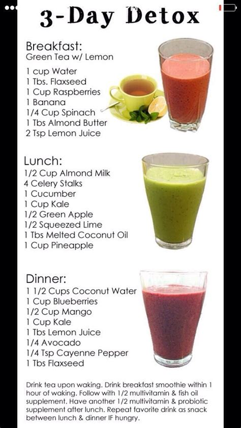 1 Meal A Day Detox by Fast Easy Way To Belly 3 Day Detox Health