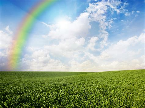 wallpaper meadows   wallpaper  rainbow sky
