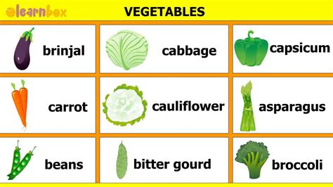 a to z vegetables names with pictures learn vegetable names teach nursery rhyme for