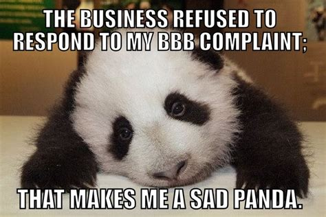 Sad Panda Meme - sad panda bbb memes pinterest pandas and sad