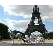 Picture Of Experience Paris Private Horse And Carriage Rides