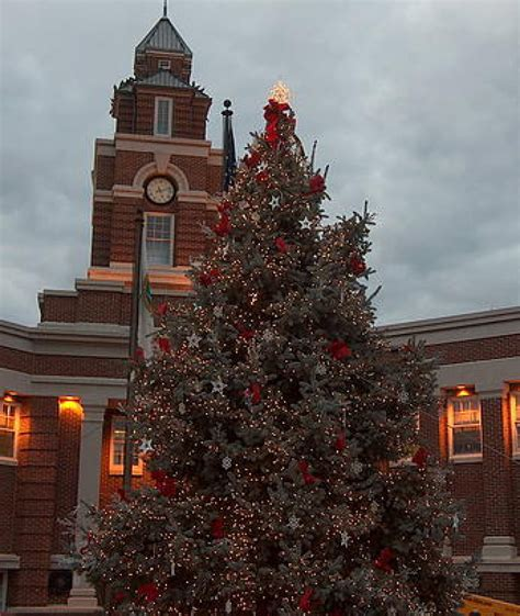 awesome picture of tennessee christmas tree fabulous