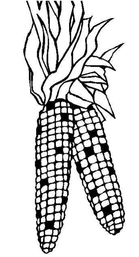 Indian Corn Coloring Page indian corn coloring page coloring home