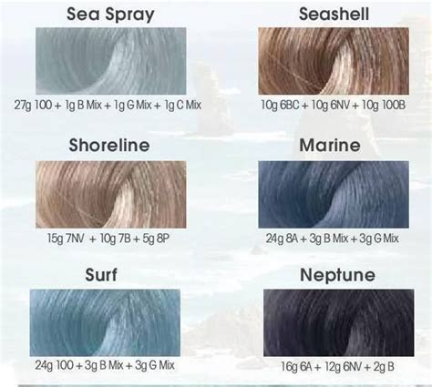 lanza hair color chart best 25 hair color charts ideas on garnier