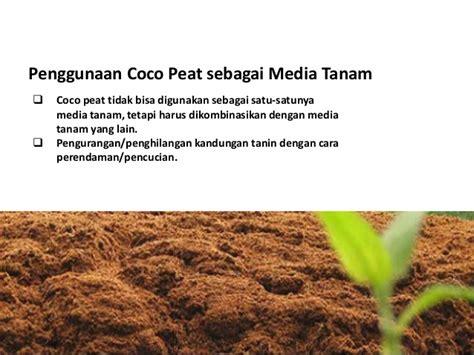 pemanfaatan limbah coco peat untuk media tanam