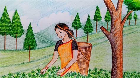 draw scenery  tea garden step  step youtube