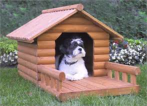 home with puppy houses and kennels