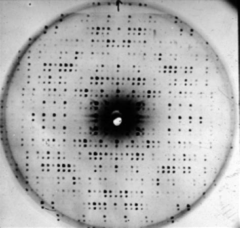 protein x diffraction pattern two protein diffraction patterns superimposed and shift