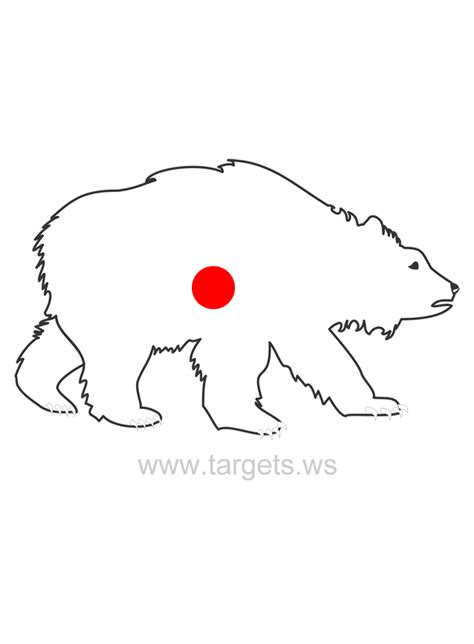 printable bear targets targets print your own animal shooting targets