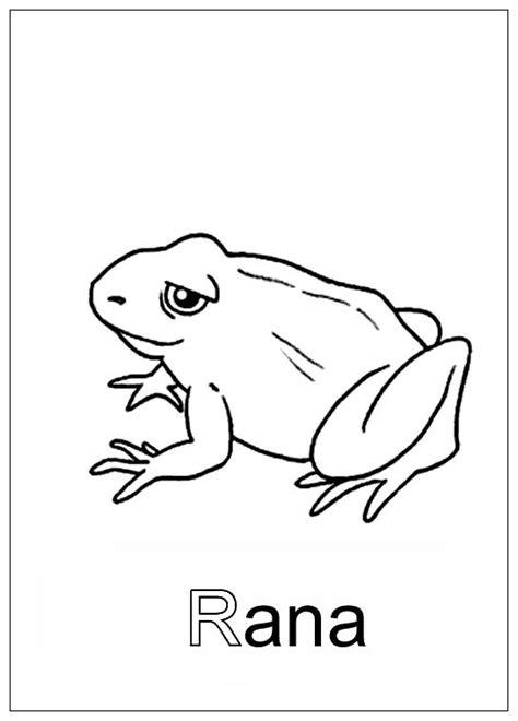 imagenes que empiecen con la letra r a color figuras con r imagui