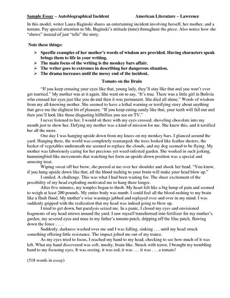 Sle Of Autobiography Essay by Sle Essays On Autobiography