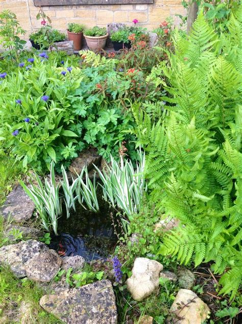 backyard small garden best 25 small ponds ideas on pinterest small garden ponds and waterfalls small