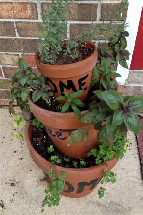 to live in pensacola florida starting an herb - Herb Container Garden