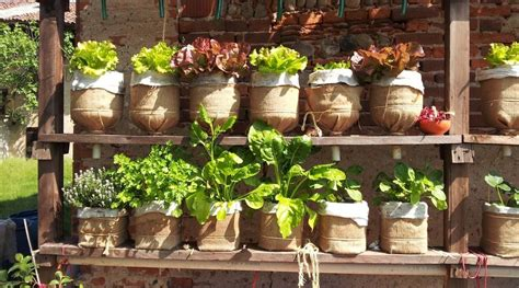 water bottle vertical garden combating malnutrition