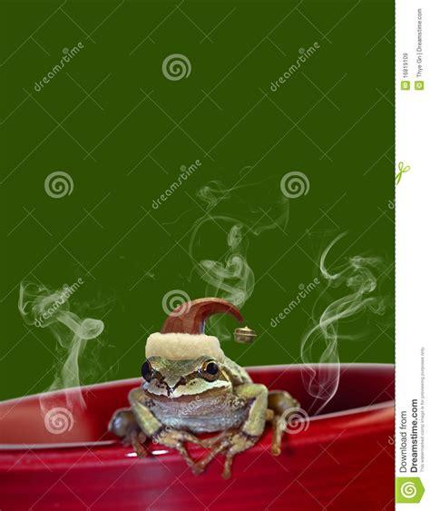 christmas tree frog sitting on red mug 2 royalty free