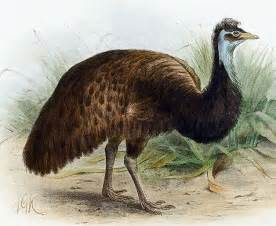 15 animales extintos en los 250 ltimos 250 a 241 os taringa