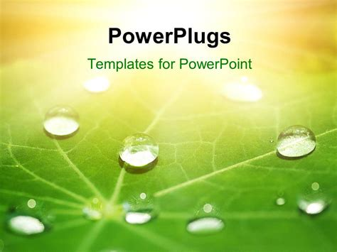 28 Powerplugs Templates For Powerpoint 21 Jpg Powerplugs For Powerpoint