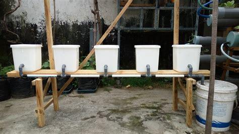 panduan membuat sistem hidroponik dutch bucket  awal sampai siap digunakan edisi revisi