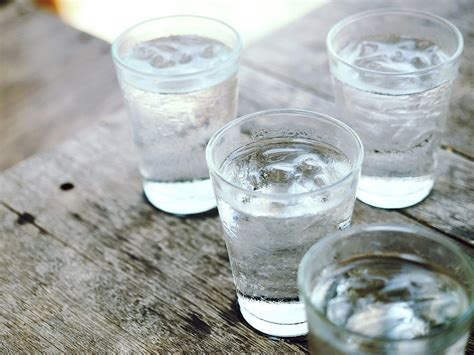Water Sap why sap water is the new drink craze