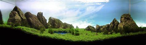 mountain aquascape 3 aquariums with bizarre underwater water optical