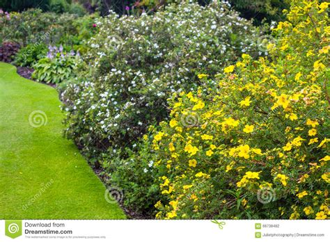 variety of flowers for garden beautiful garden with variety of trees and bushes stock