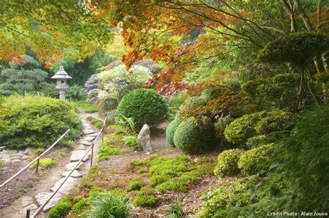 bureau valley martinique 10 jardins japonais 224 visiter en d 233 tente jardin