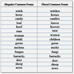 nouns all the way types of nouns