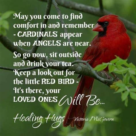 cardinals angel and mom on pinterest