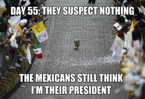 5 De Mayo Memes - cinco de mayo memes best collection of funny cinco de