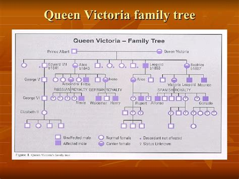 printable queen victoria family tree romanov family tree queen victoria best tree 2017